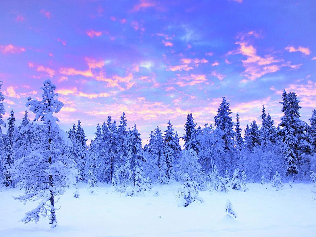 zimní sezóna